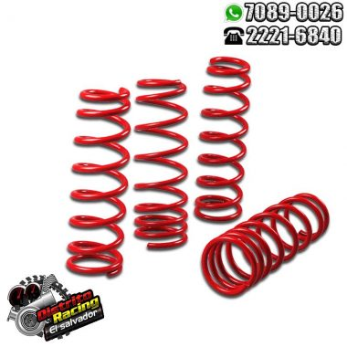 Lower Spring - Espiral Deportivo Honda Civic 92-00